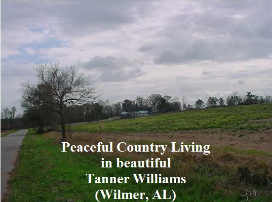 Peaceful Country Living